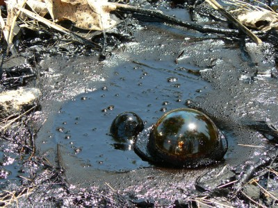 Bakterije katran predelujejo v metan.