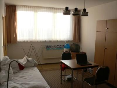 Dnevna soba / spalnica